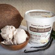 Dairy Free Coconut Granita, Vanilla Stevia