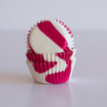 Mini Raspberry Pink Zebra Cupcake LIners