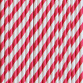 Watermelon Red Stripe Paper Straws