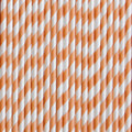 Peach Stripe Paper Straws