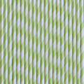 Kiwi Green Stripe Paper Straws