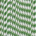 Green Stripe Paper Straws