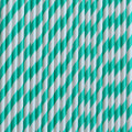 Aqua Stripe Paper Straws