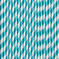 Turquoise Stripe Paper Straws