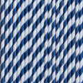 Denim Blue Stripe Paper Straws