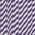 Plum Purple Stripe Paper Straws