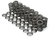 Brian Crower - Valve Springs - Single (Toyota 2Azfe)