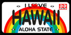 License Plate Beach Towel