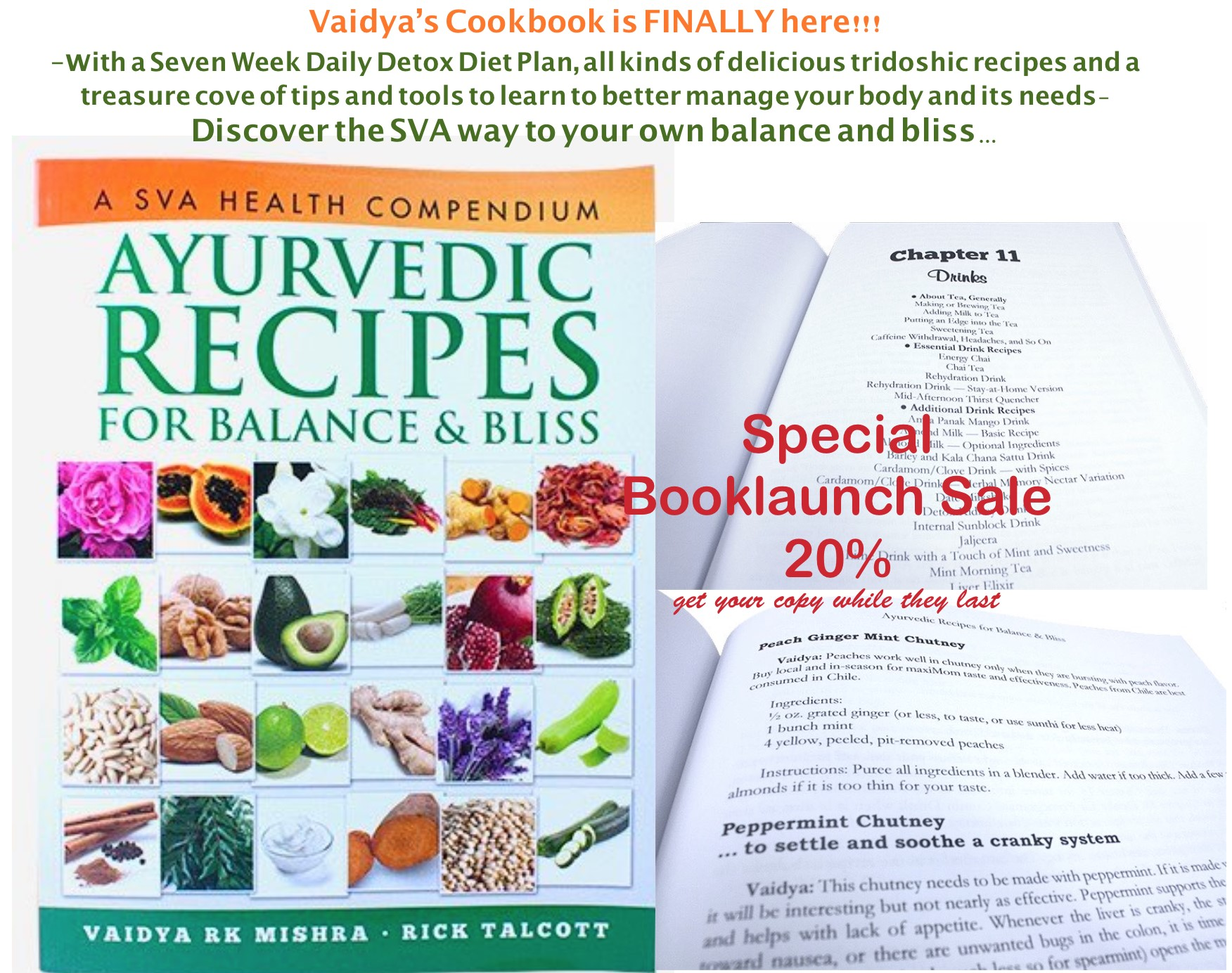 booklaunch-banner-cookbook.jpg