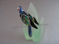 Balabac Bird Brooch with Leaf Display