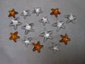 SCS 2005 Miniature Starfish