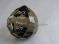 SCS 2010 Water Project Paperweight