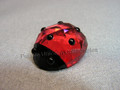 Lucky Ladybug (Ladybird)