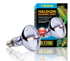 Exo Terra Halogen Basking Spot Lamp  - 150 Watt (PT2184)
