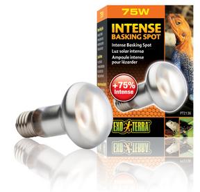 Exo Terra Intense Repti Basking Spot Lamp - 75 Watt (PT2136)