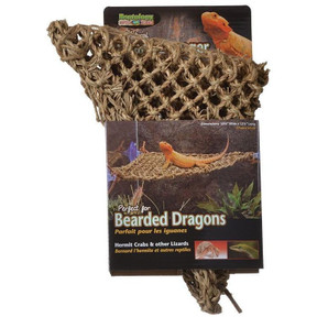 Natural Lizard Loungers - Small Corner (27x32cm)