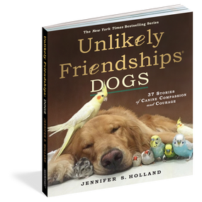 dogs,dog lovers,friendship,photography,inspirational,books