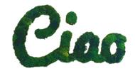 Moss Ciao - Cursive