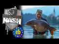 Nash Free 2016 DVD Carp Fishing
