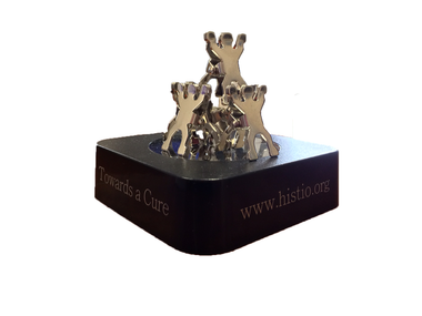 Histiocytosis Association Paperweight - Side view