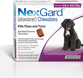 Nexgard For Dogs 24 1 60 Lbs 6 Pack Sierra Pet Meds