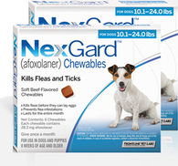 Nexgard for Dogs 10.1-24 lbs - 12 Pack