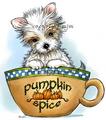 Pumpkin Spice Yorkie