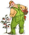Big Guy's Garden