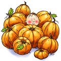 Patrick in the Pumpkins