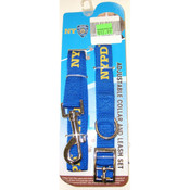 NYPD Blue Collar and Leash