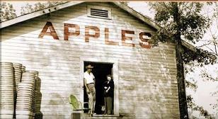 apple-house.jpg