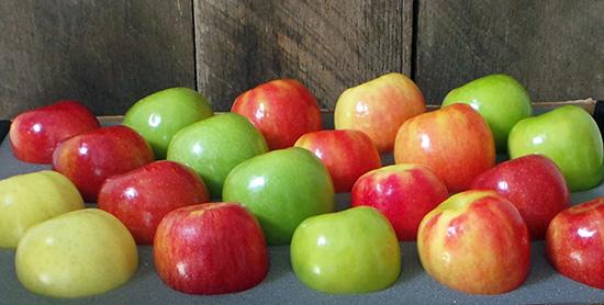 banner-apples.jpg