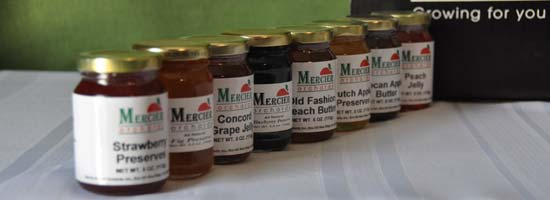 Blue Ridge GA Mercier Orchards Jelly Online