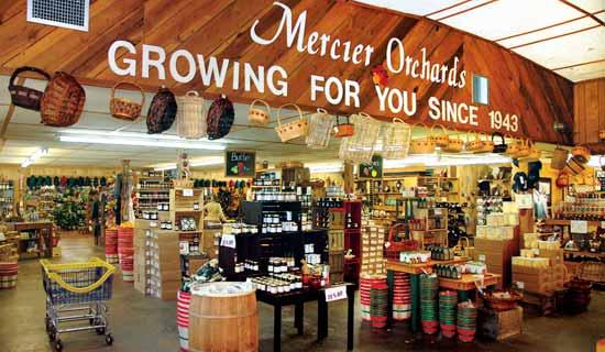 Mercier Orchards Online Market Blue Ridge GA