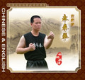 The Famous Southern Yong Chun Fistic Play
