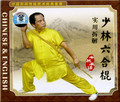 Shaolin Liuhe Stick and Practical Illustration