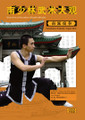 southern shaolin kung fu