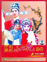 zhejiang xiao baihua yue opera troupe