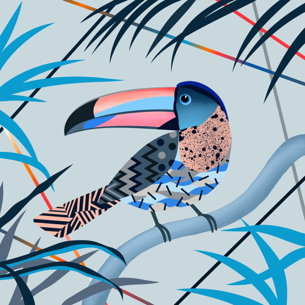 Magic Toucan by Adam Bartlett available at Of Cabbages & Kings.