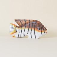 Fish Swimming Carp