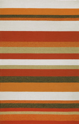 Stripe Indoor Outdoor Rug in Orange