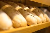 Old World German Farmer's Bread