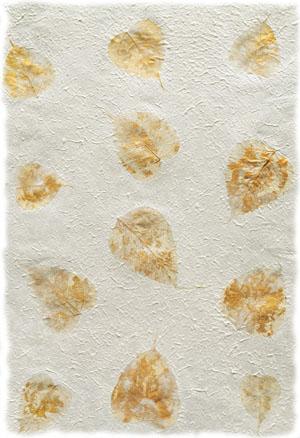 27054-coral-seas-gilded-lotus-leaf-deckle-fullsize-300w.jpg