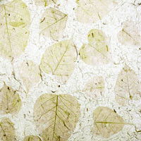 "#26527 Textured Fiber Handmade Paper, ""Autumn Lotus"" 22"" x 31"" Skeletonized, almost transparent lotus leaves in various sizes are embedded in a highly textured handmade paper pulp."