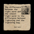 "The difference beween the right word - 4x4"" cork backed stone coaster"