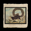 "Long-tailed Squirrel  8 January 1838 - 4x4"" cork backed stone coaster"