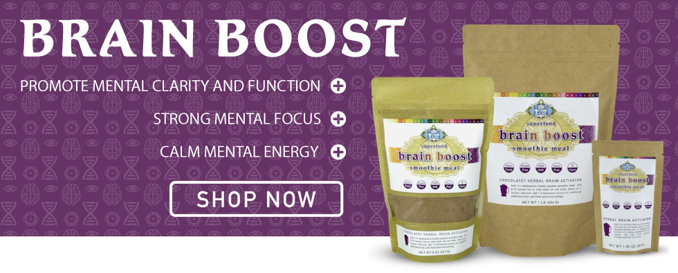 New! Bright Earth Food's Herbal Brain Boost, Vegan, Raw, Gluten-Free