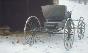 Old Buggy and Winter Birds