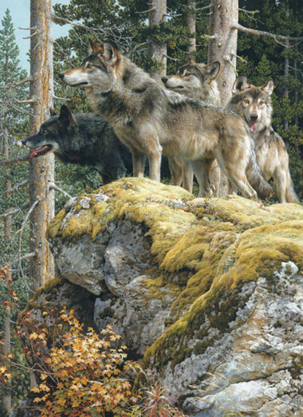 Lookout Tower Wolves