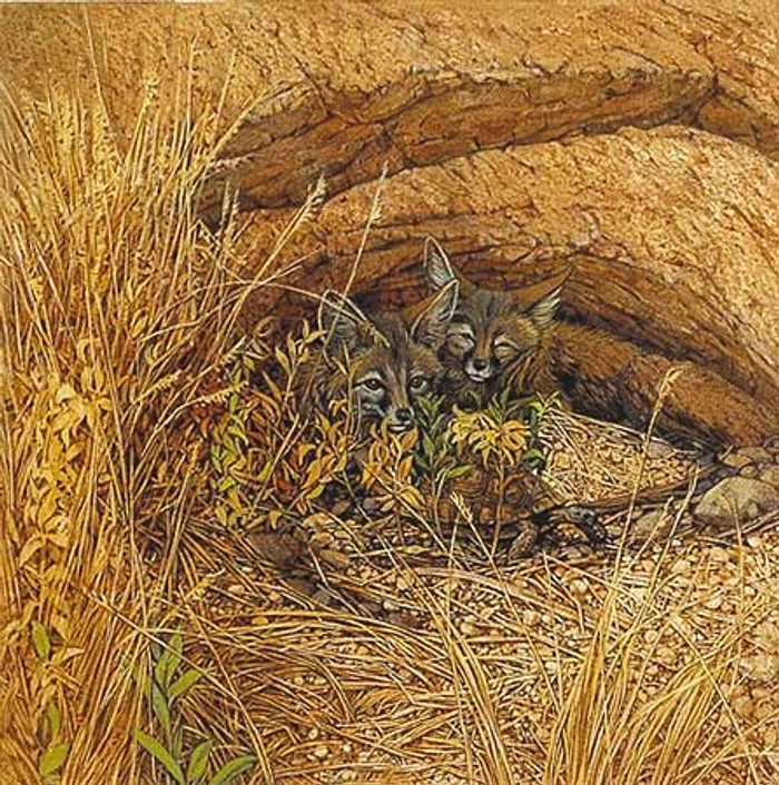 FOX HAVEN, by Bev Doolittle OPEN EDITION PRINT